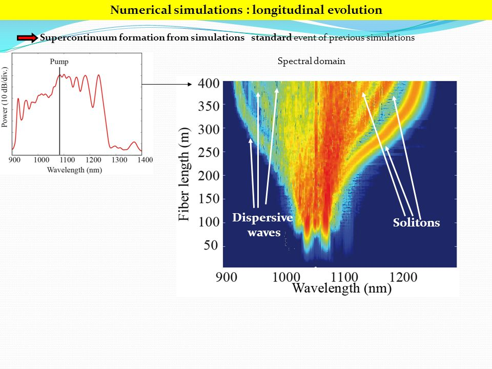 Numerical simulations : longitudinal evolution