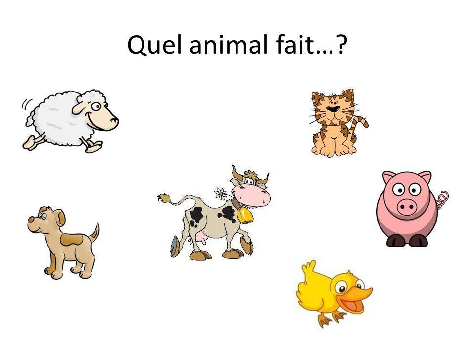 Quel animal fait…