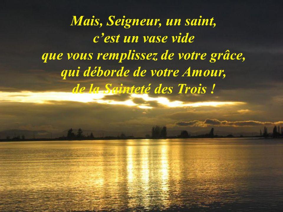 Mais, Seigneur, un saint, c'est un vase vide que vous remplissez de votre grâce, qui déborde de votre Amour, de la Sainteté des Trois !