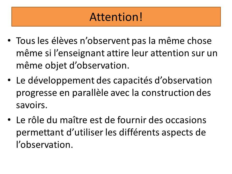 Attention! Tous les élèves n'observent pas la même chose même si l'enseignant attire leur attention sur un même objet d'observation.