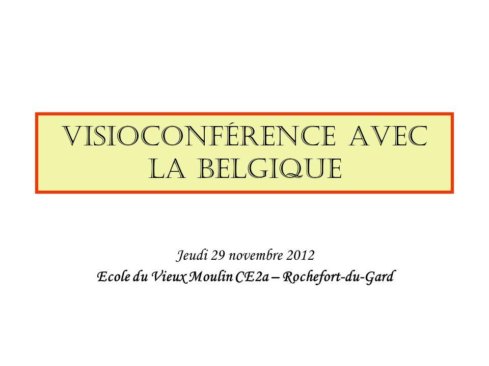 Visioconférence avec la Belgique