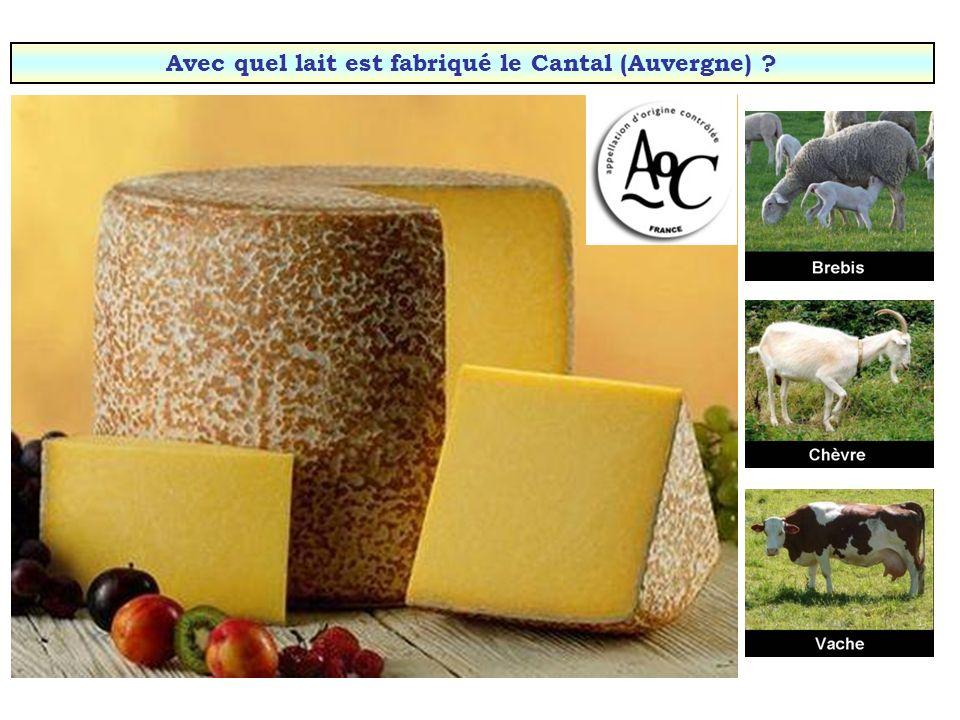 Avec quel lait est fabriqué le Cantal (Auvergne)