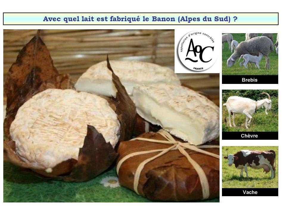 Avec quel lait est fabriqué le Banon (Alpes du Sud)
