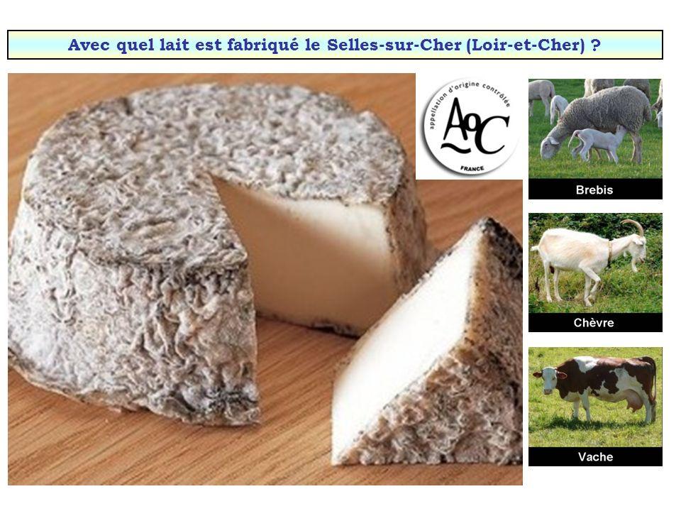 Avec quel lait est fabriqué le Selles-sur-Cher (Loir-et-Cher)