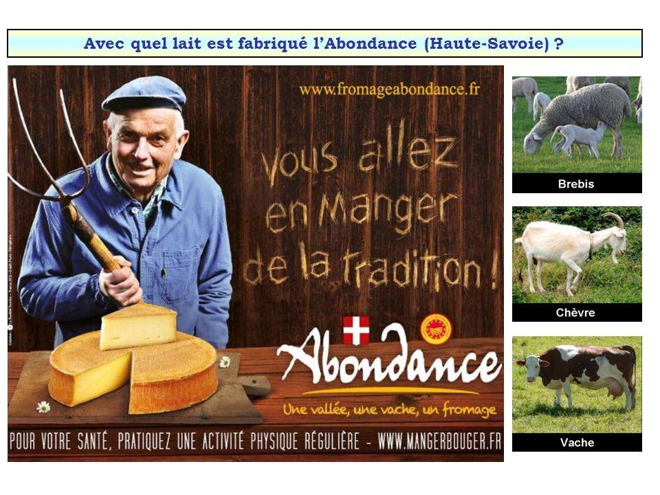 Avec quel lait est fabriqué l'Abondance (Haute-Savoie)