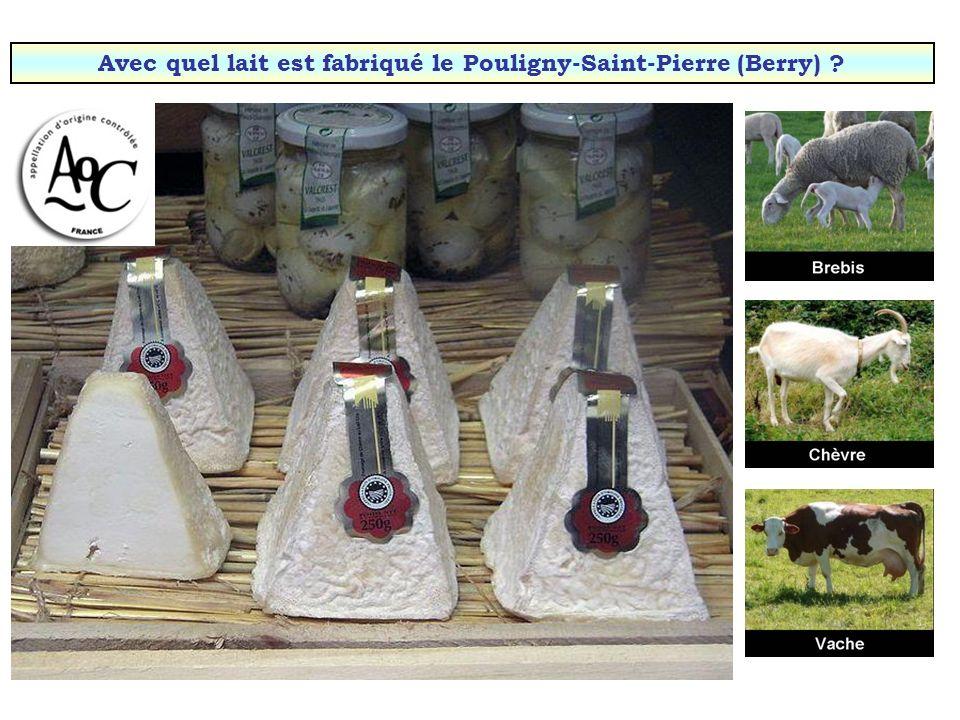 Avec quel lait est fabriqué le Pouligny-Saint-Pierre (Berry)