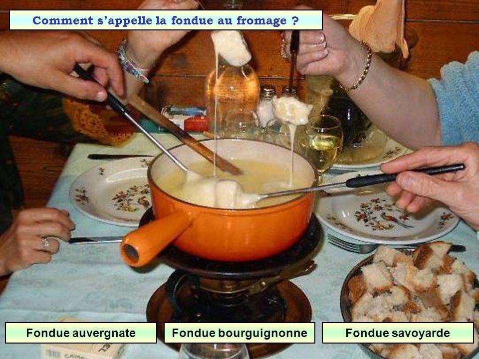 Comment s'appelle la fondue au fromage