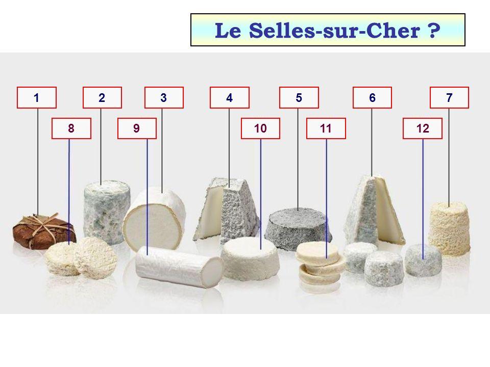 Le Selles-sur-Cher 1 2 3 4 5 6 7 8 9 10 11 12