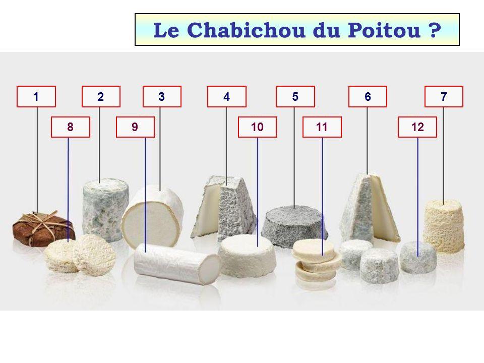 Le Chabichou du Poitou 1 2 3 4 5 6 7 8 9 10 11 12