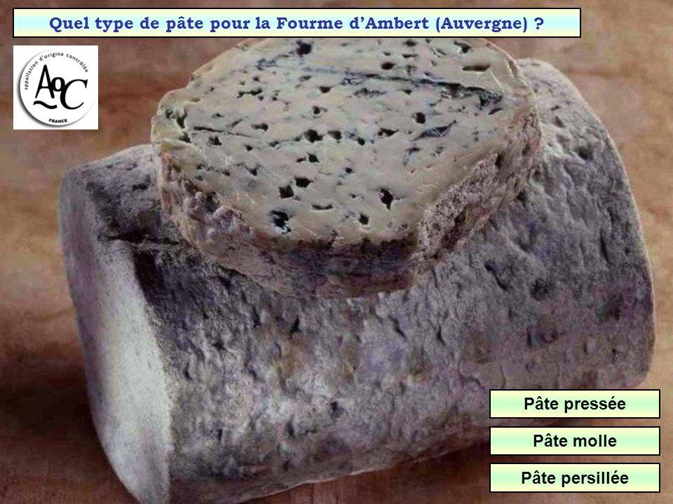 Quel type de pâte pour la Fourme d'Ambert (Auvergne)