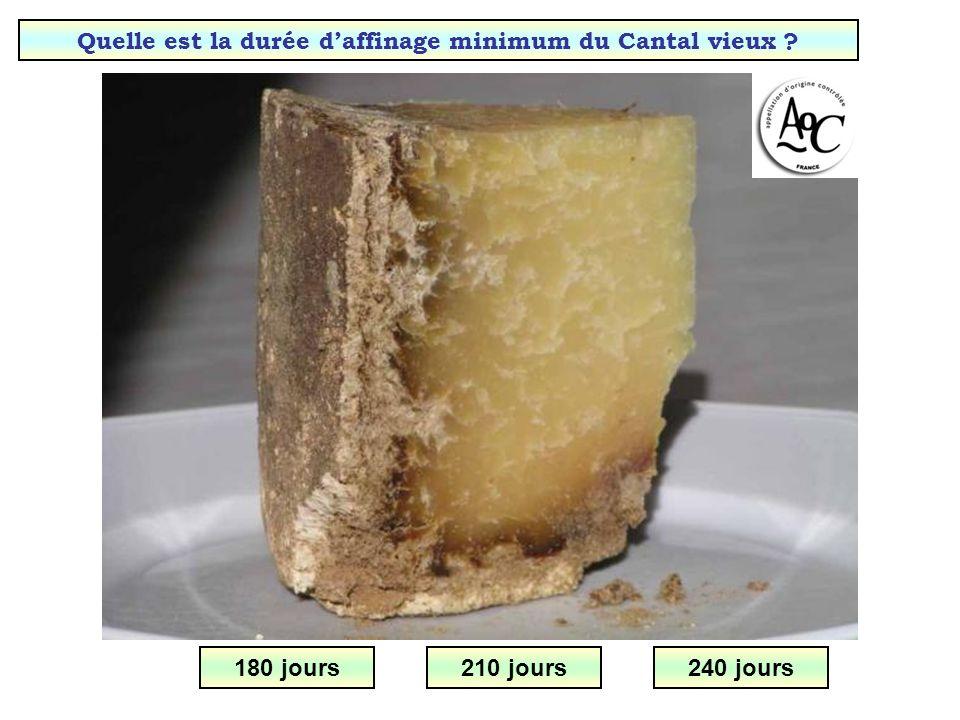Quelle est la durée d'affinage minimum du Cantal vieux