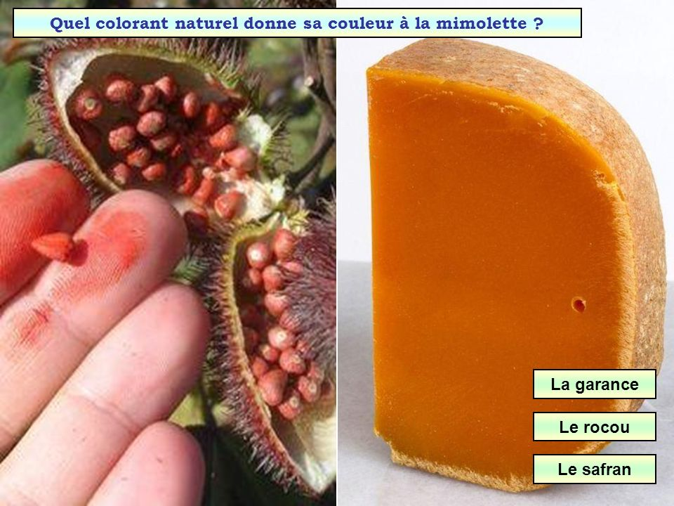 Quel colorant naturel donne sa couleur à la mimolette