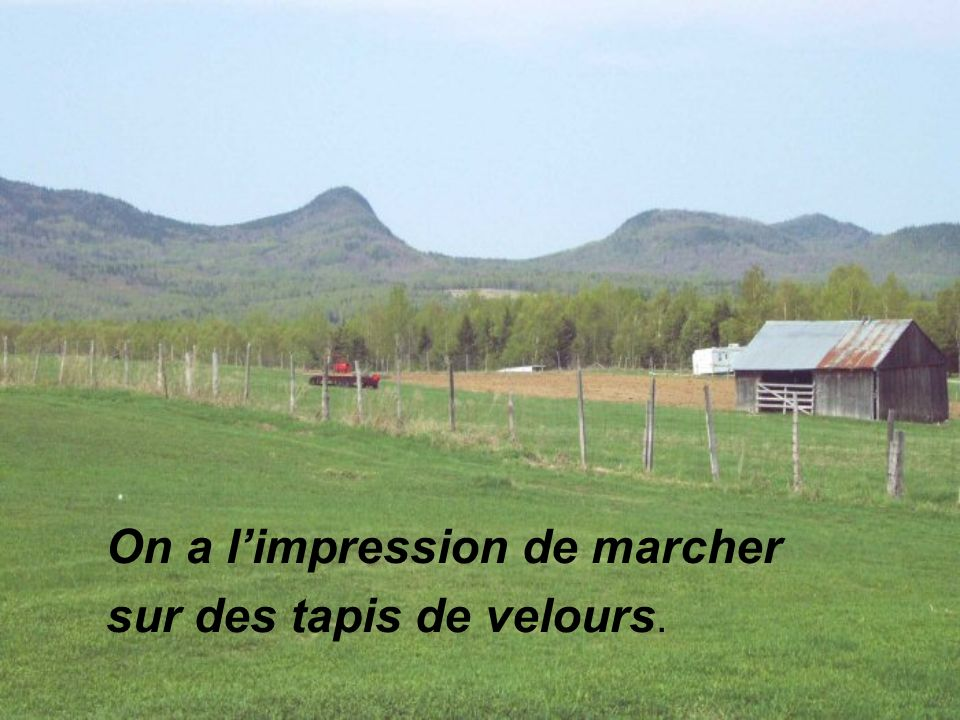 On a l'impression de marcher