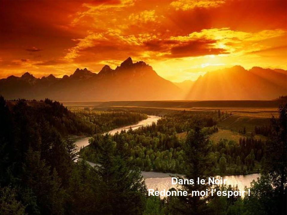 Dans le Noir Redonne moi l'espoir !
