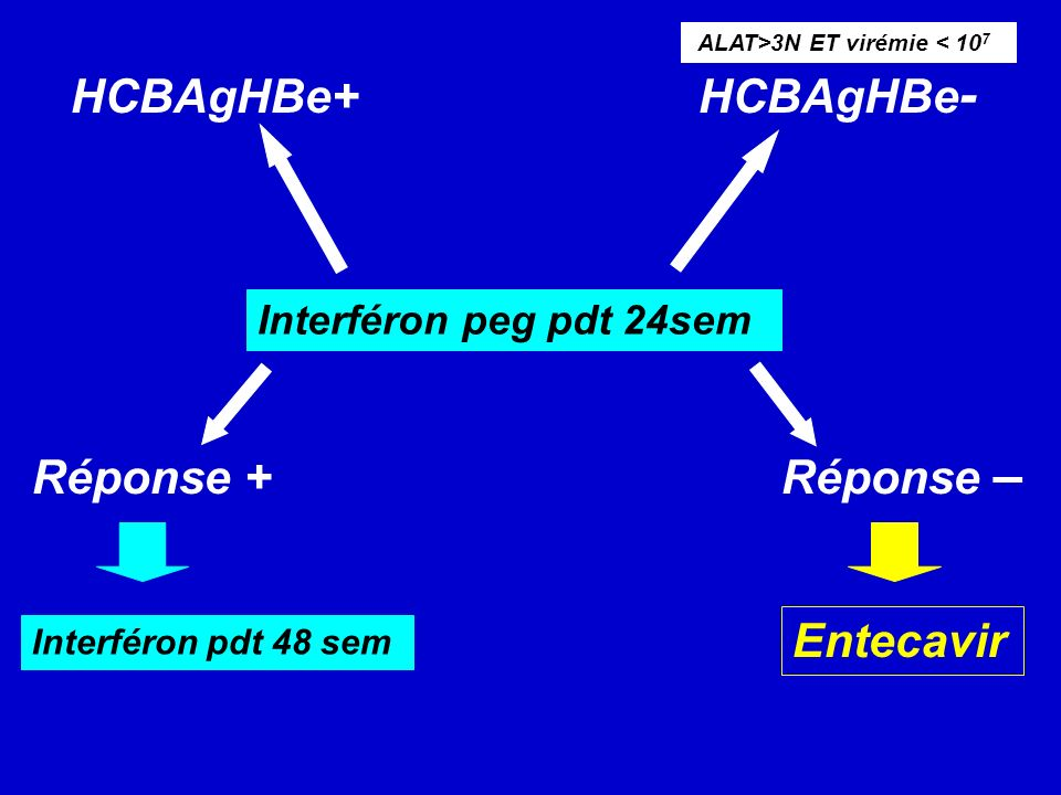 HCBAgHBe+ HCBAgHBe- Réponse + Réponse – Entecavir