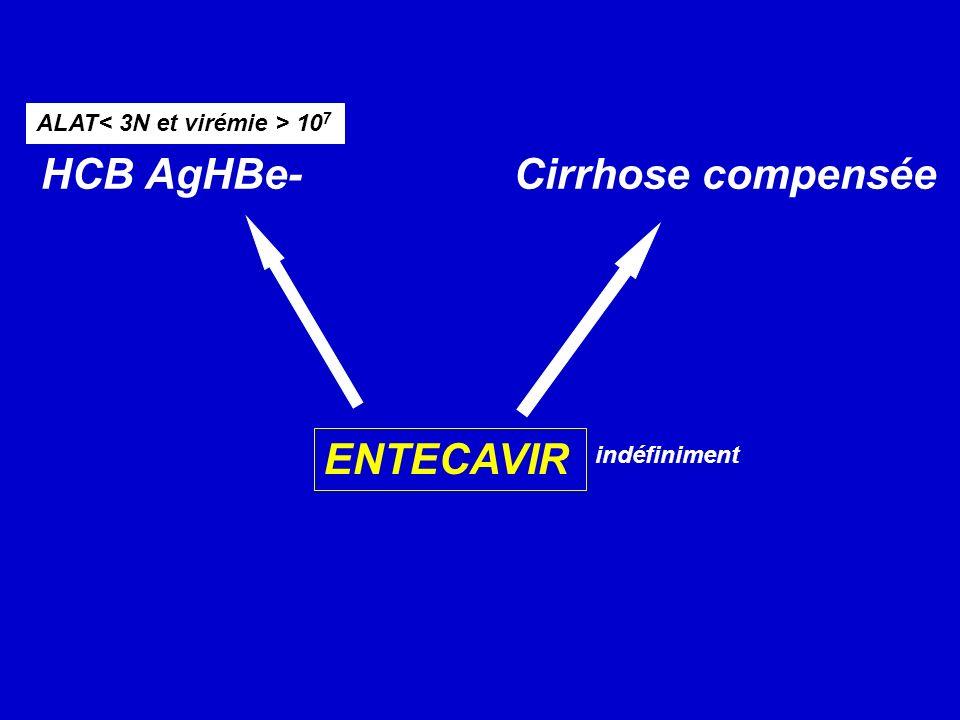 HCB AgHBe- Cirrhose compensée