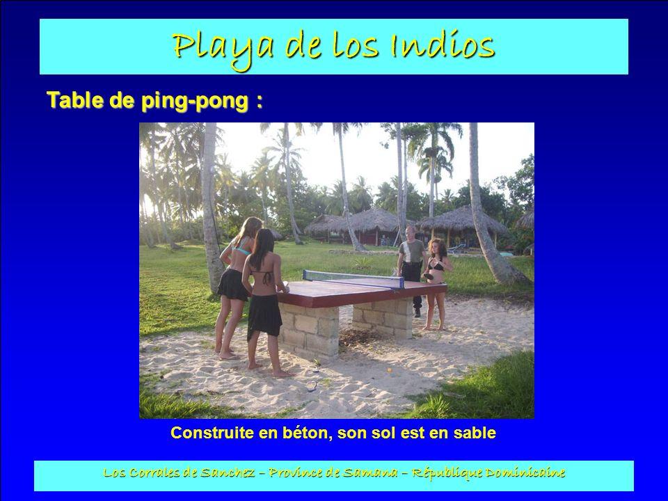 Table de ping-pong : Construite en béton, son sol est en sable