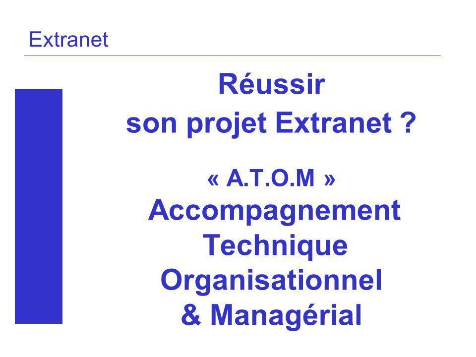 Réussir son projet Extranet Technique Organisationnel & Managérial