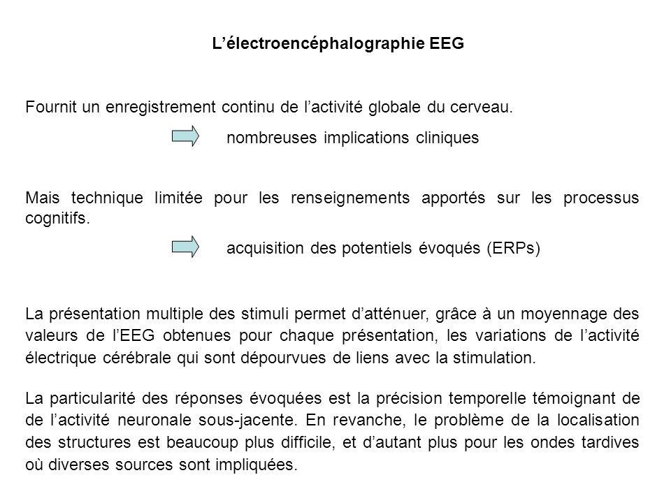 L'électroencéphalographie EEG