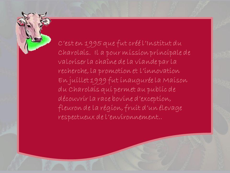 C'est en 1995 que fut créé l'Institut du Charolais