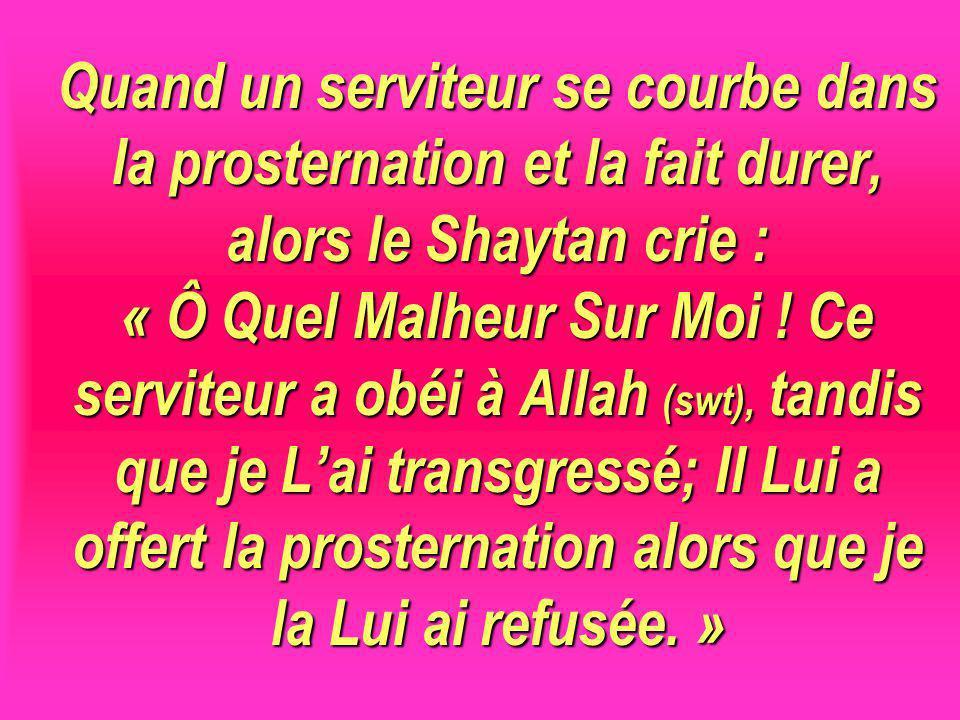Quand un serviteur se courbe dans la prosternation et la fait durer, alors le Shaytan crie : « Ô Quel Malheur Sur Moi ! Ce serviteur a obéi à Allah (swt), tandis que je L'ai transgressé; Il Lui a offert la prosternation alors que je la Lui ai refusée. »