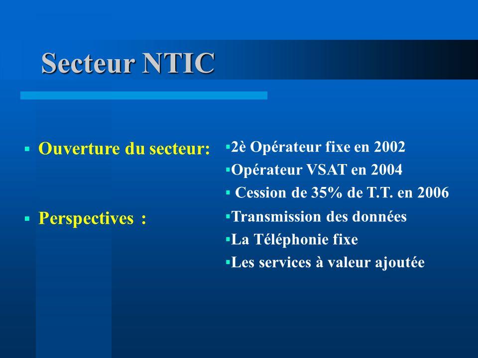 Secteur NTIC Ouverture du secteur: Perspectives :