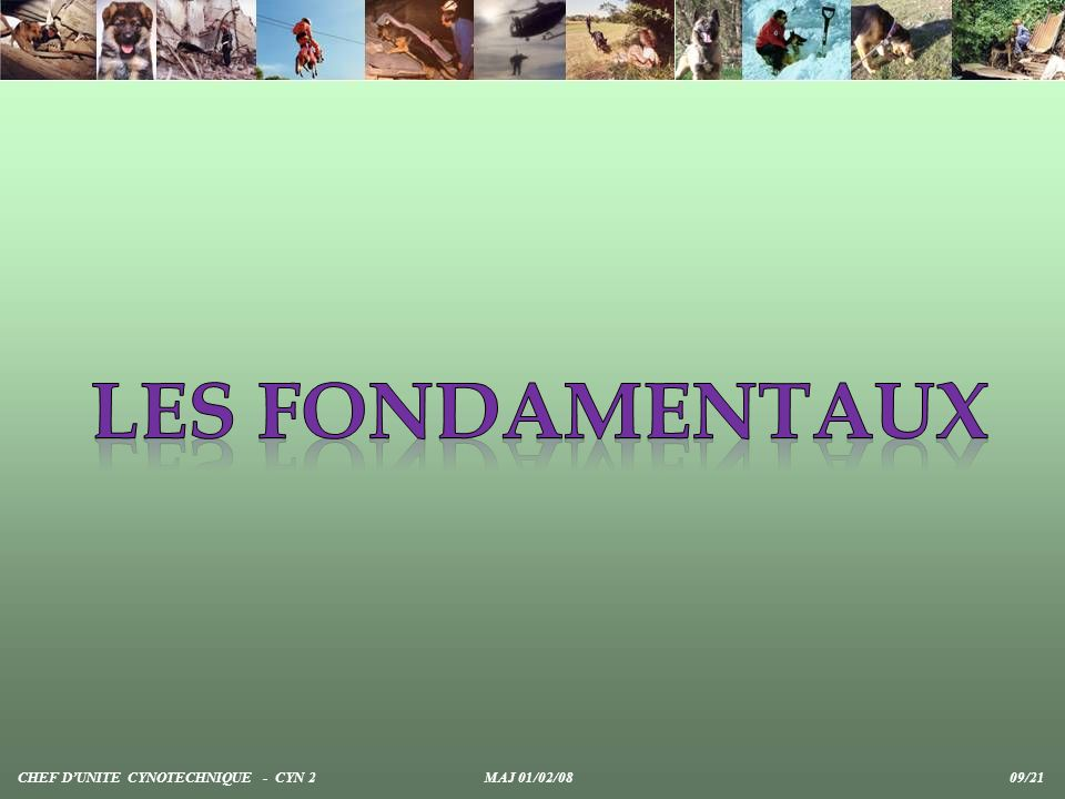 Les fondamentaux CHEF D'UNITE CYNOTECHNIQUE - CYN 2 MAJ 01/02/08 09/21.