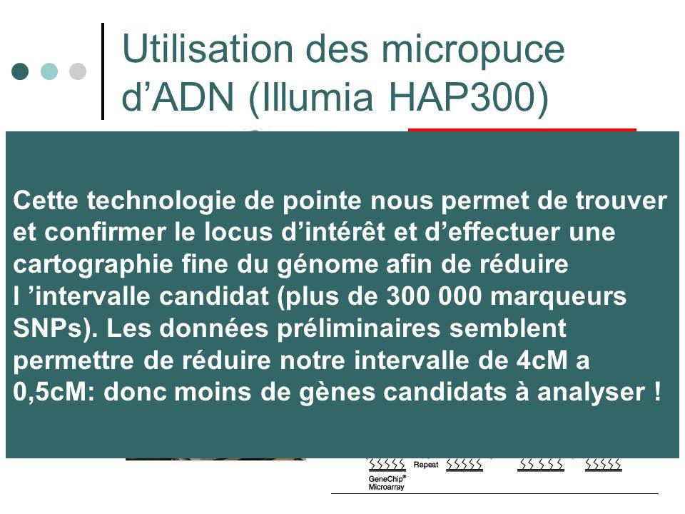 Utilisation des micropuce d'ADN (Illumia HAP300)