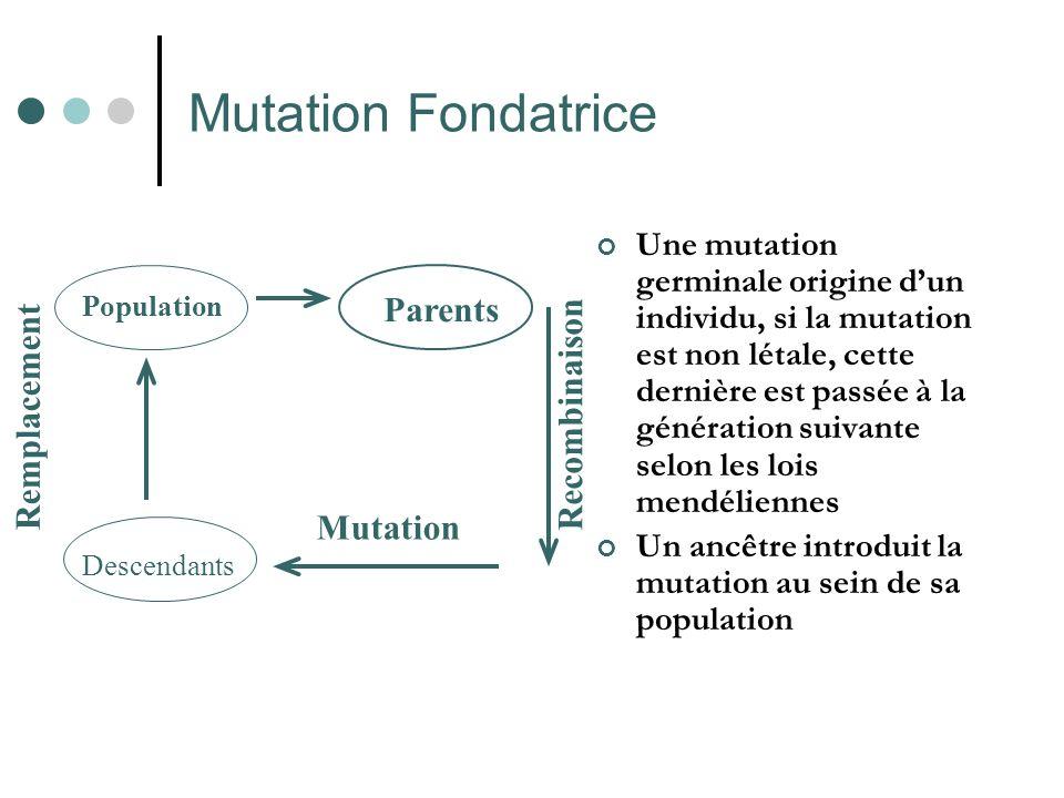 Mutation Fondatrice Parents Remplacement Recombinaison Mutation