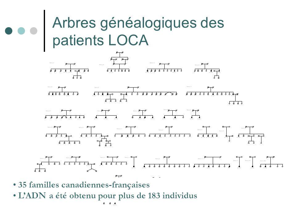 Arbres généalogiques des patients LOCA