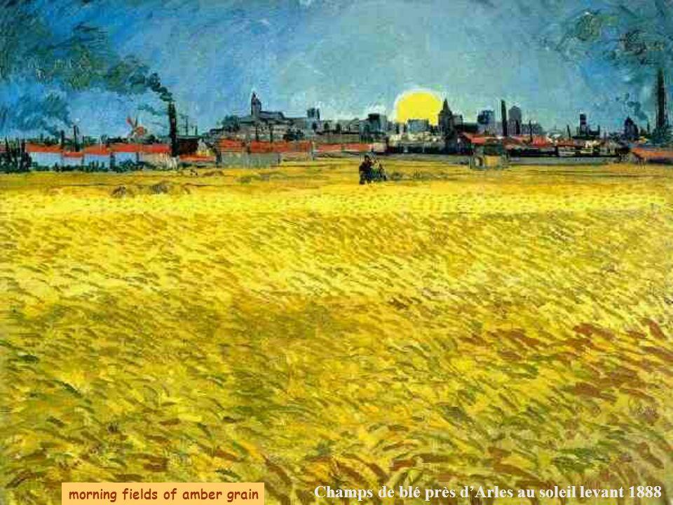 Champs de blé près d'Arles au soleil levant 1888