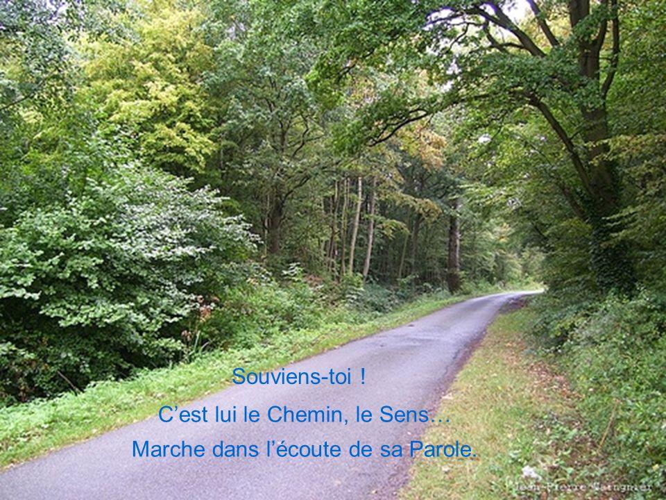 C'est lui le Chemin, le Sens… Marche dans l'écoute de sa Parole.