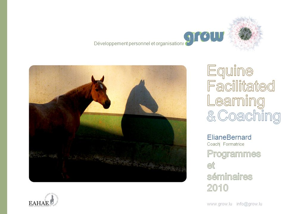 Equine Facilitated Learning Coaching & Programmes et séminaires 2010