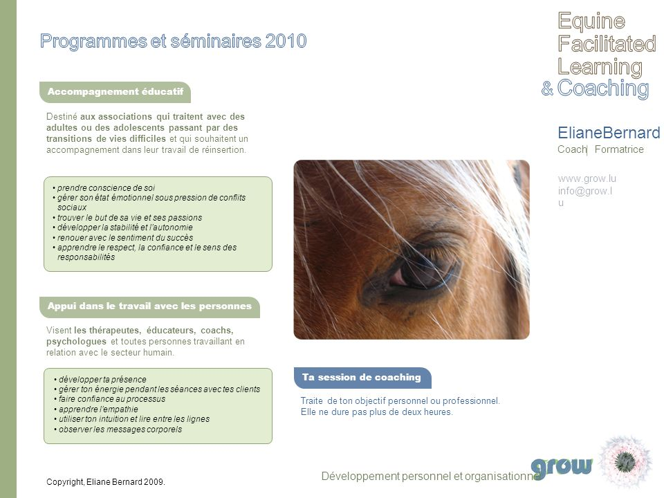 Equine Facilitated Learning Coaching Programmes et séminaires 2010 &