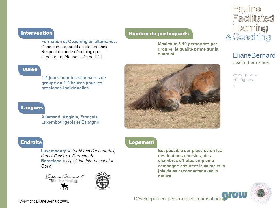 Equine Facilitated Learning Coaching & ElianeBernard Intervention