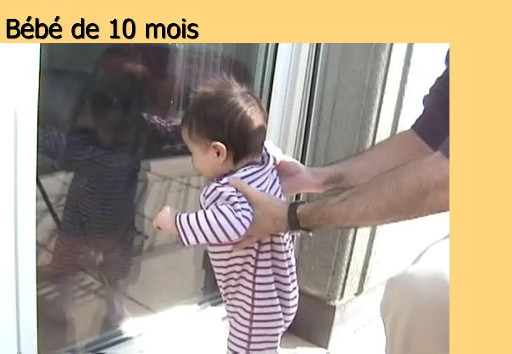 Bébé de 10 mois 36