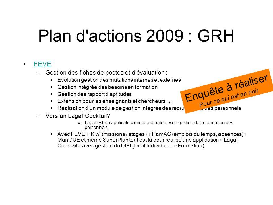 Plan d actions 2009 : GRH Enquête à réaliser FEVE