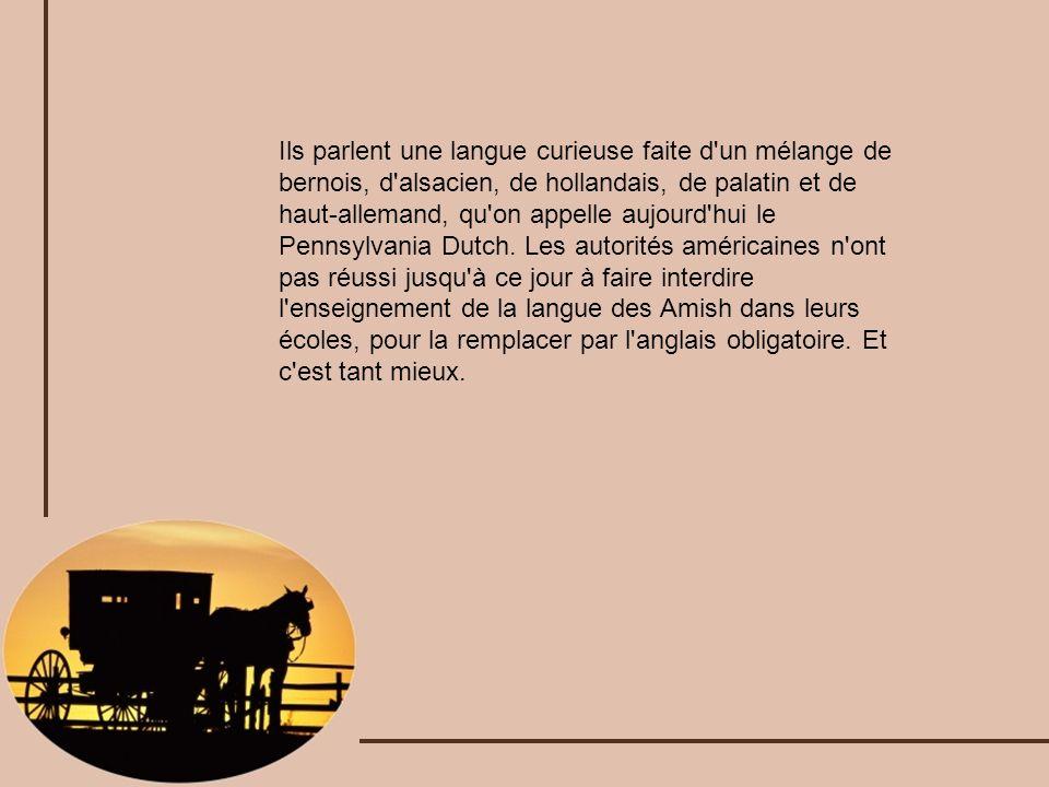 Ils parlent une langue curieuse faite d un mélange de bernois, d alsacien, de hollandais, de palatin et de haut-allemand, qu on appelle aujourd hui le Pennsylvania Dutch.
