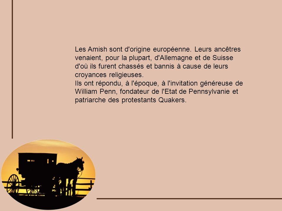 Les Amish sont d origine européenne