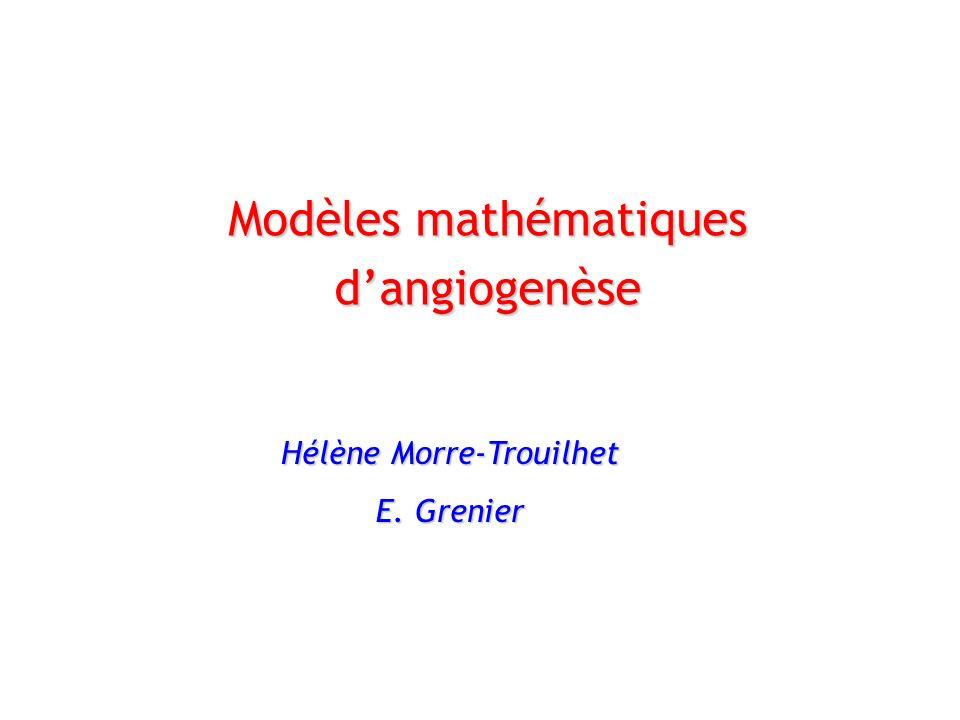 Modèles mathématiques d'angiogenèse