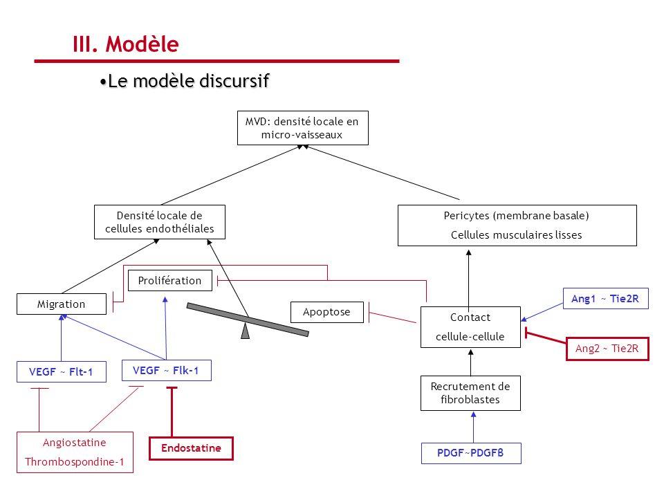 III. Modèle Le modèle discursif MVD: densité locale en micro-vaisseaux