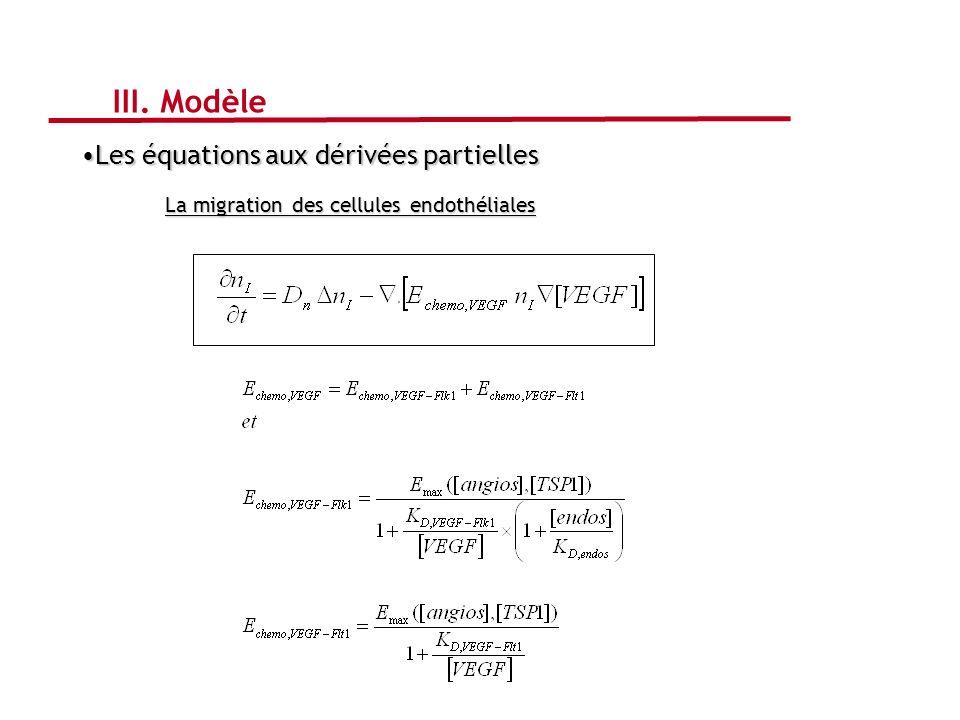 III. Modèle Les équations aux dérivées partielles