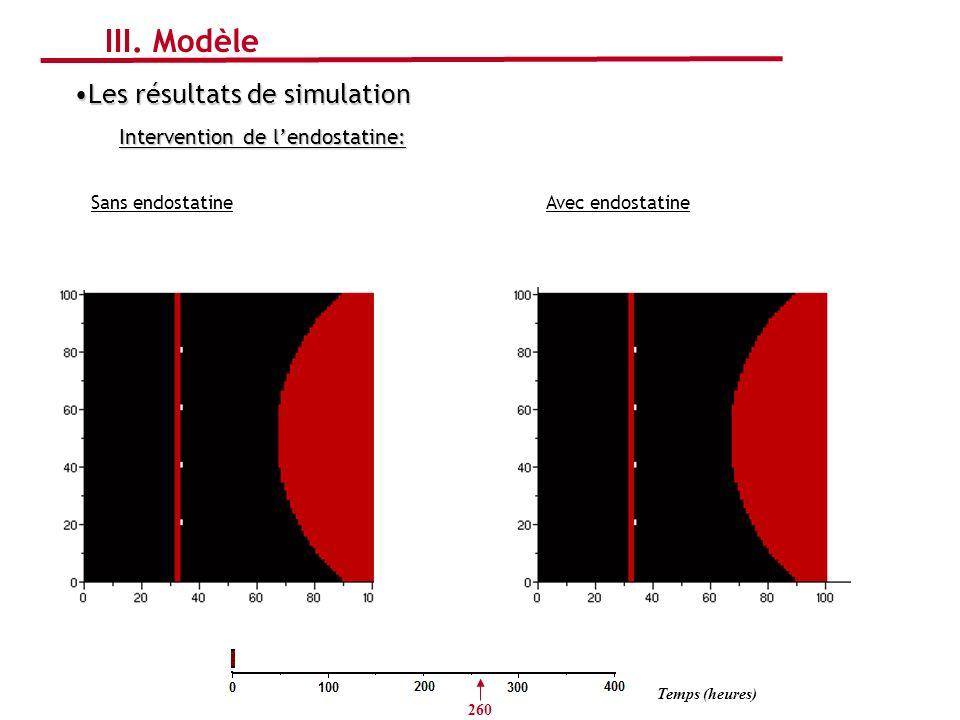 III. Modèle Les résultats de simulation Intervention de l'endostatine: