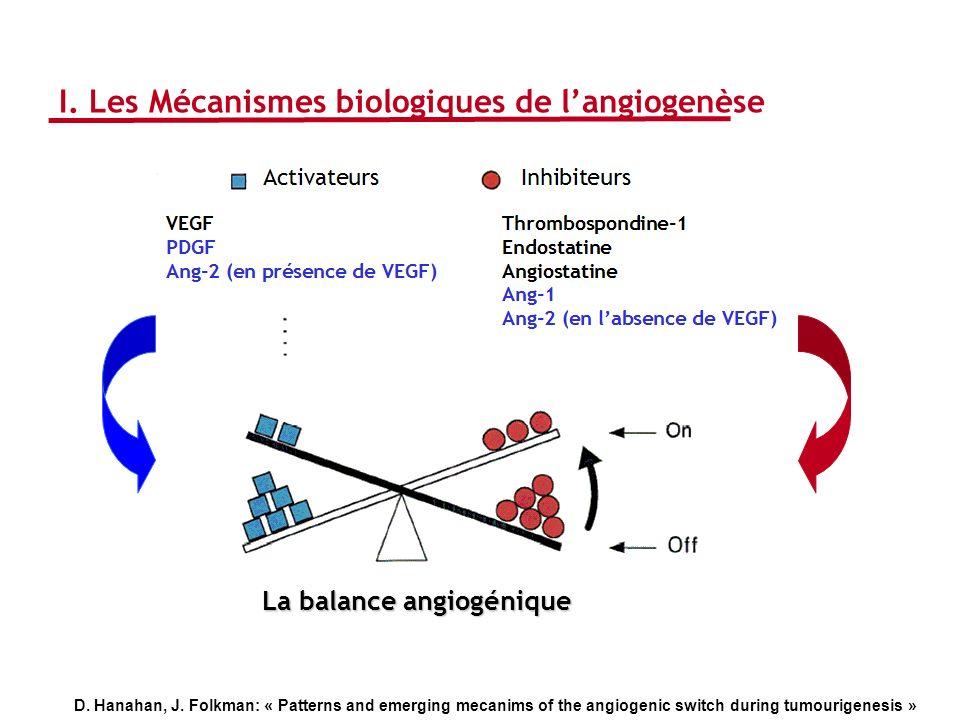 La balance angiogénique