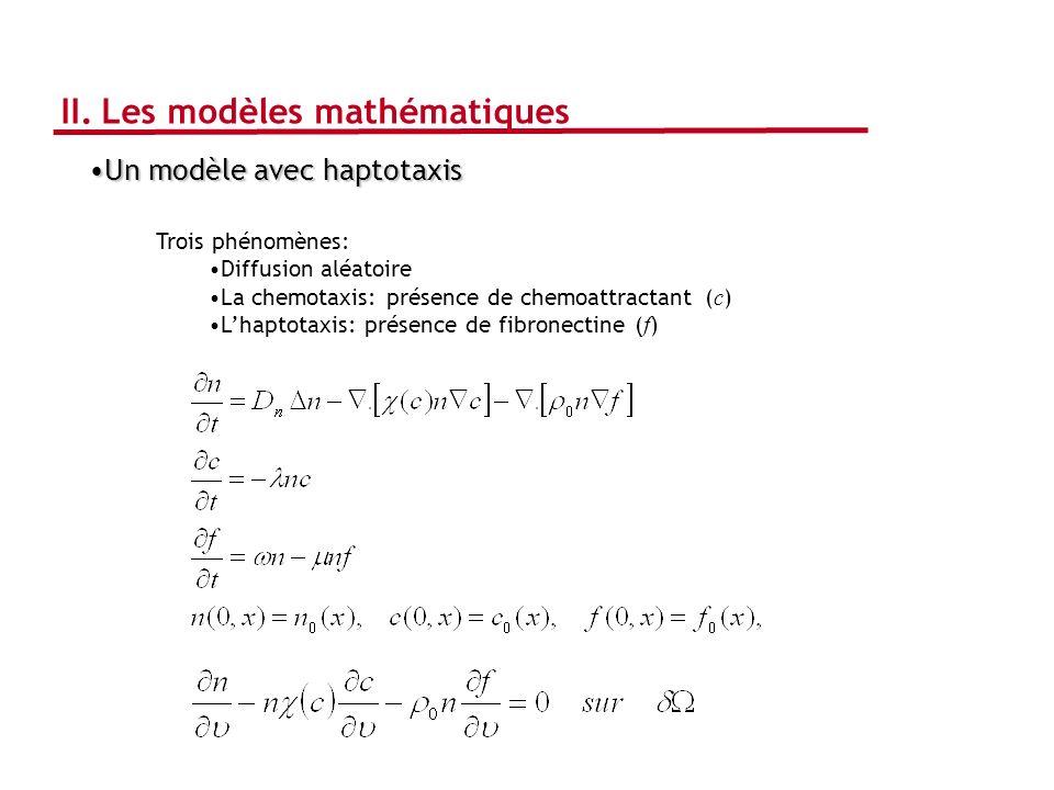 II. Les modèles mathématiques