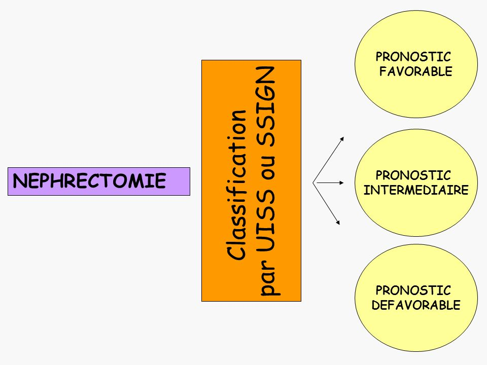 par UISS ou SSIGN Classification NEPHRECTOMIE PRONOSTIC FAVORABLE