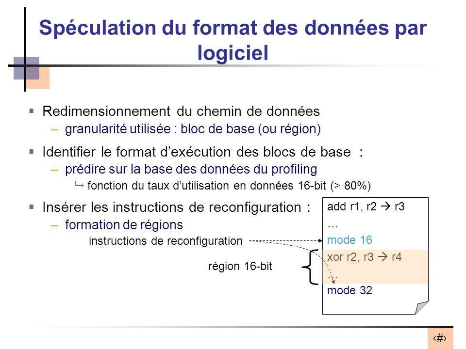 Spéculation du format des données par logiciel