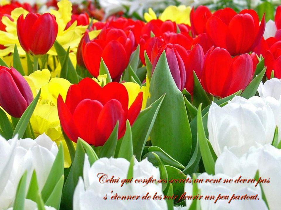 Celui qui confie ses secrets au vent ne devra pas s étonner de les voir fleurir un peu partout.
