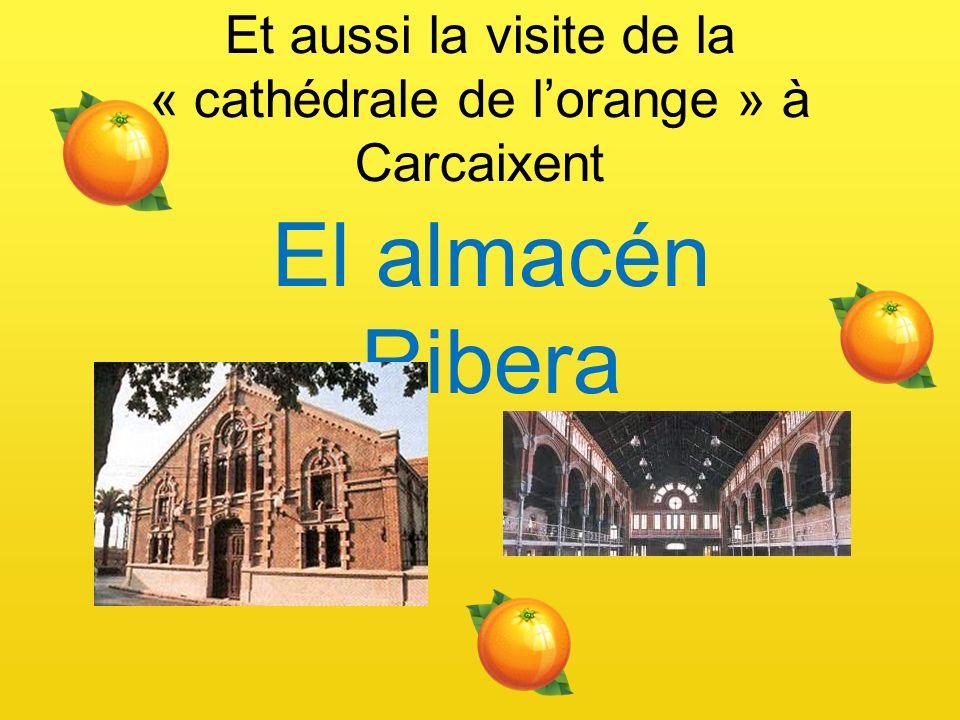 Et aussi la visite de la « cathédrale de l'orange » à Carcaixent