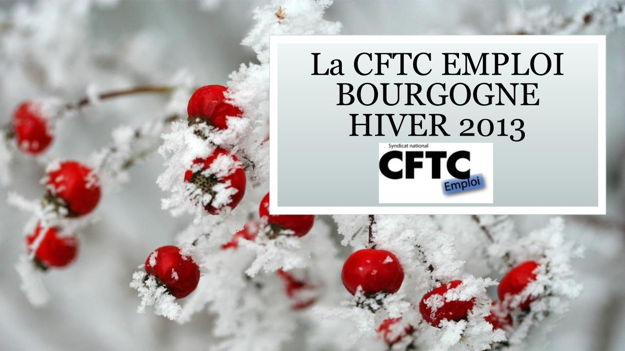 La CFTC EMPLOI BOURGOGNE HIVER 2013